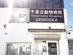 甲南 動物 病院